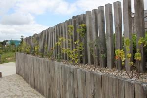 amenagement exterieur eco quartier val de la pelliniere les herbiers - vendee urbaniste: in situ credit photo: atlanbois